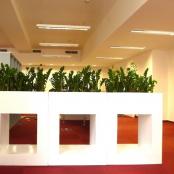 interier-kvetinova-vyzdoba-rosmarino-kvetinovy-atelier-17