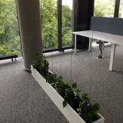 interier-kvetinova-vyzdoba-rosmarino-kvetinovy-atelier-47