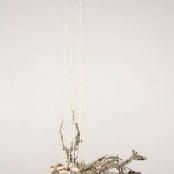 susinove-aranze-rosmarino-kvetinovy-atelier-10