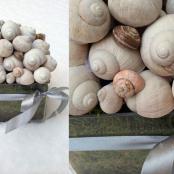 susinove-aranze-rosmarino-kvetinovy-atelier-15